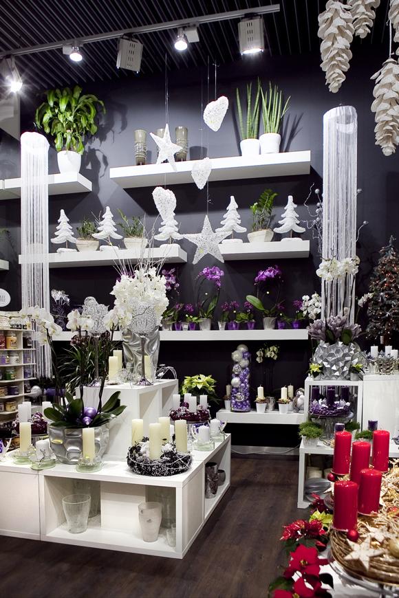 Luxusné kvetinárstvo Rhapis v AUPARK