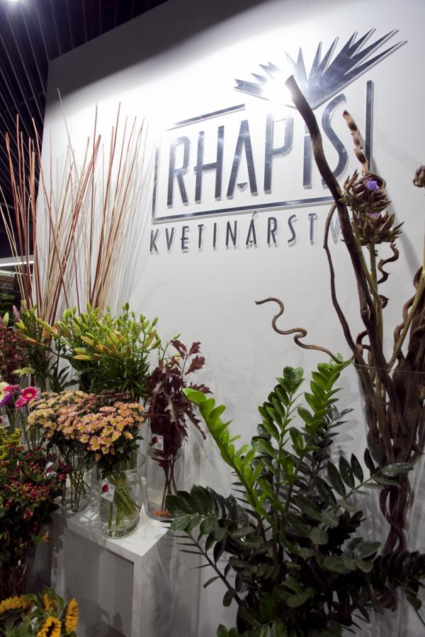 Luxusné kvetinárstvo Rhapis v DANUBIA