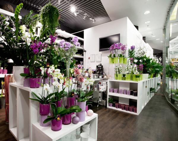 Luxusné kvetinárstvo Rhapis v TESCO Lamač