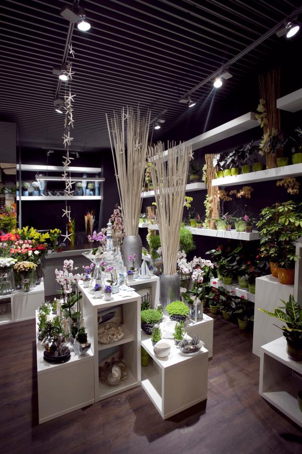 Luxusné kvetinárstvo Rhapis v RETRO